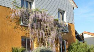 La Bonne Maison - Maison provençale + piscine
